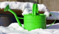10 důvodů, proč je zima v zahradě skvělá