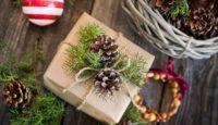 5 tipů na vánoční dárky pro zahradníky