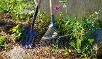 Můj tip na zahradní nářadí