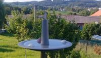7 způsobů jak si na zahradě udržet užitečný hmyz